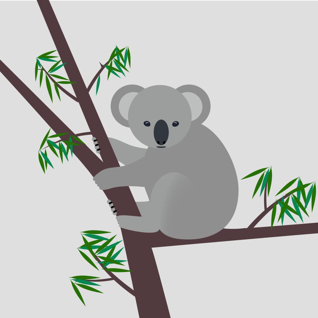 Koala Tree