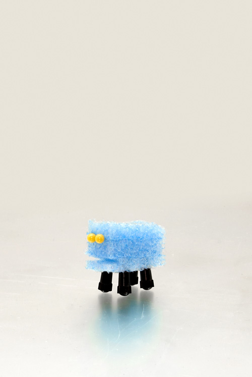 blue-sheep_kl.jpg